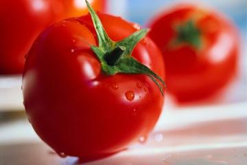 0904-tomatoes