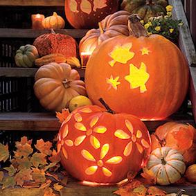 Pretty Pumpkins. ..
